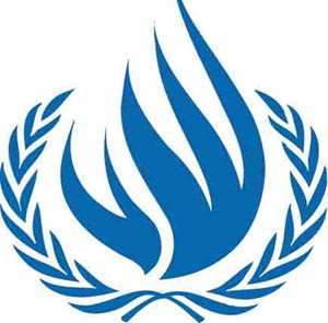 UN Advisor stresses the need to develop direct democracy globally to protect human rights